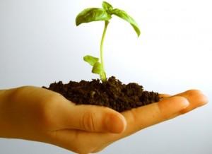 Come far crescere la tua impresa